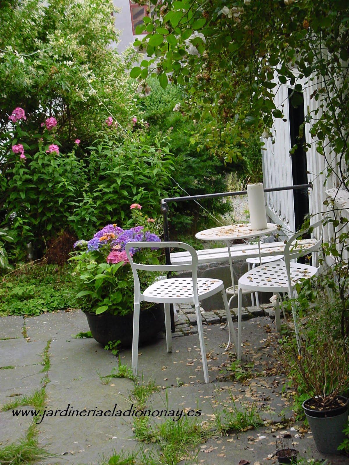 Jardineria eladio nonay cada planta en su sitio - Jardineria eladio nonay ...