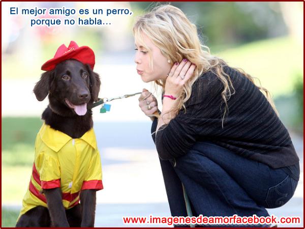 Meme Chistoso Abra La Puerta Imagenes  - Frases y Fotos