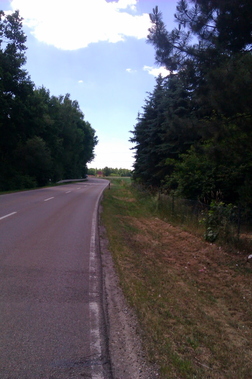 Die Straße von Luhe nach Wernberg