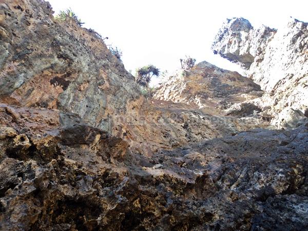 Tebing Pantai Dadapan
