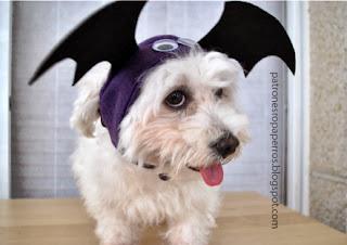 perro disfrazado de murcielago