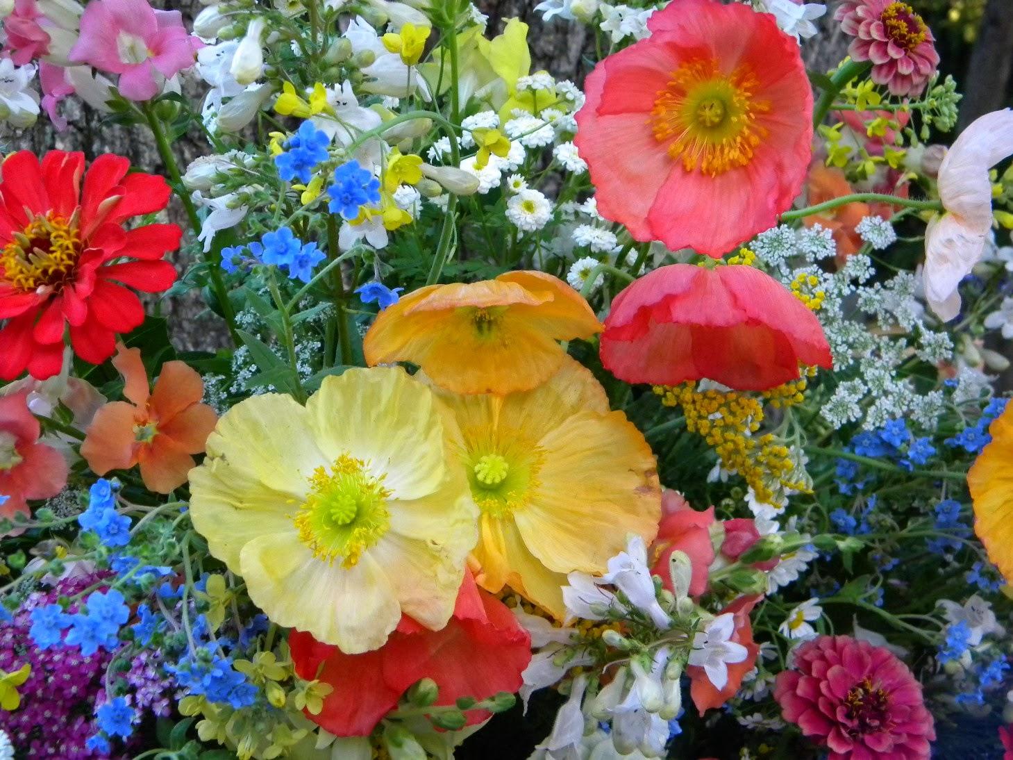 Wedding Flowers from Springwell September 2013