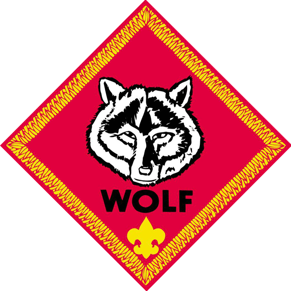 cub scout wolf patch eBay