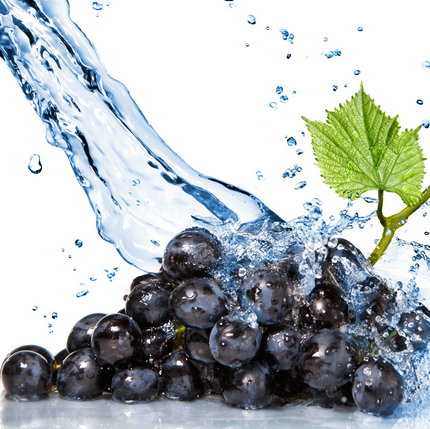 Medicine Quality of Grapes