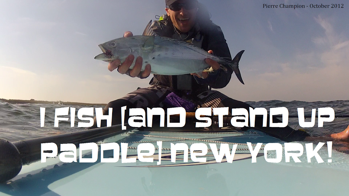 I FISH NEW YORK