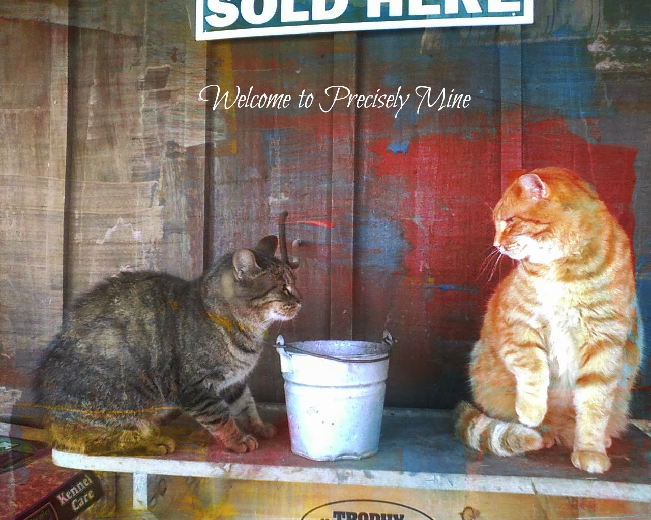 Welcome to Precisely Mine