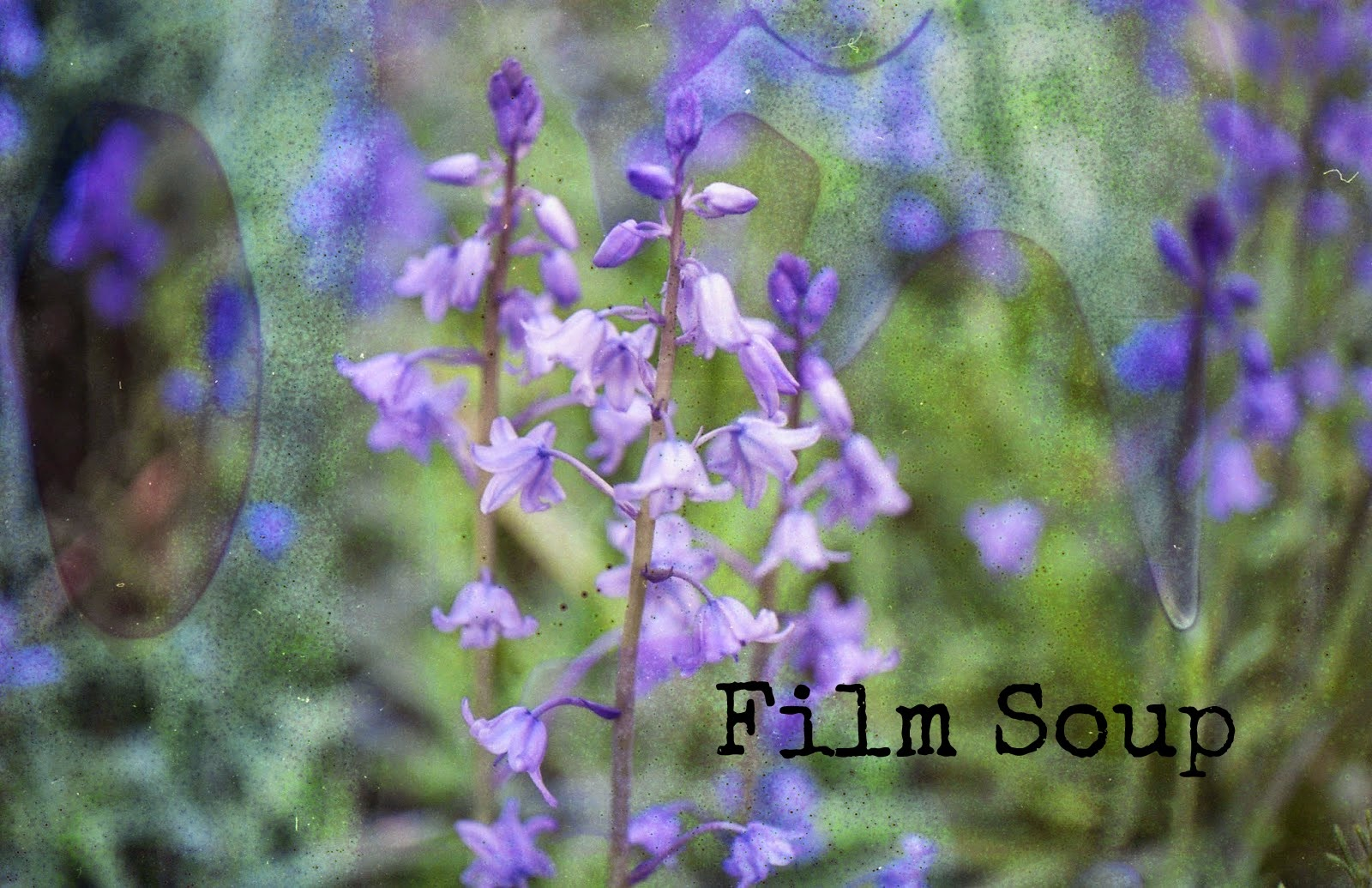 http://talesonfilm.blogspot.co.uk/2014/07/film-soup.html