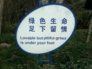 Human Grass