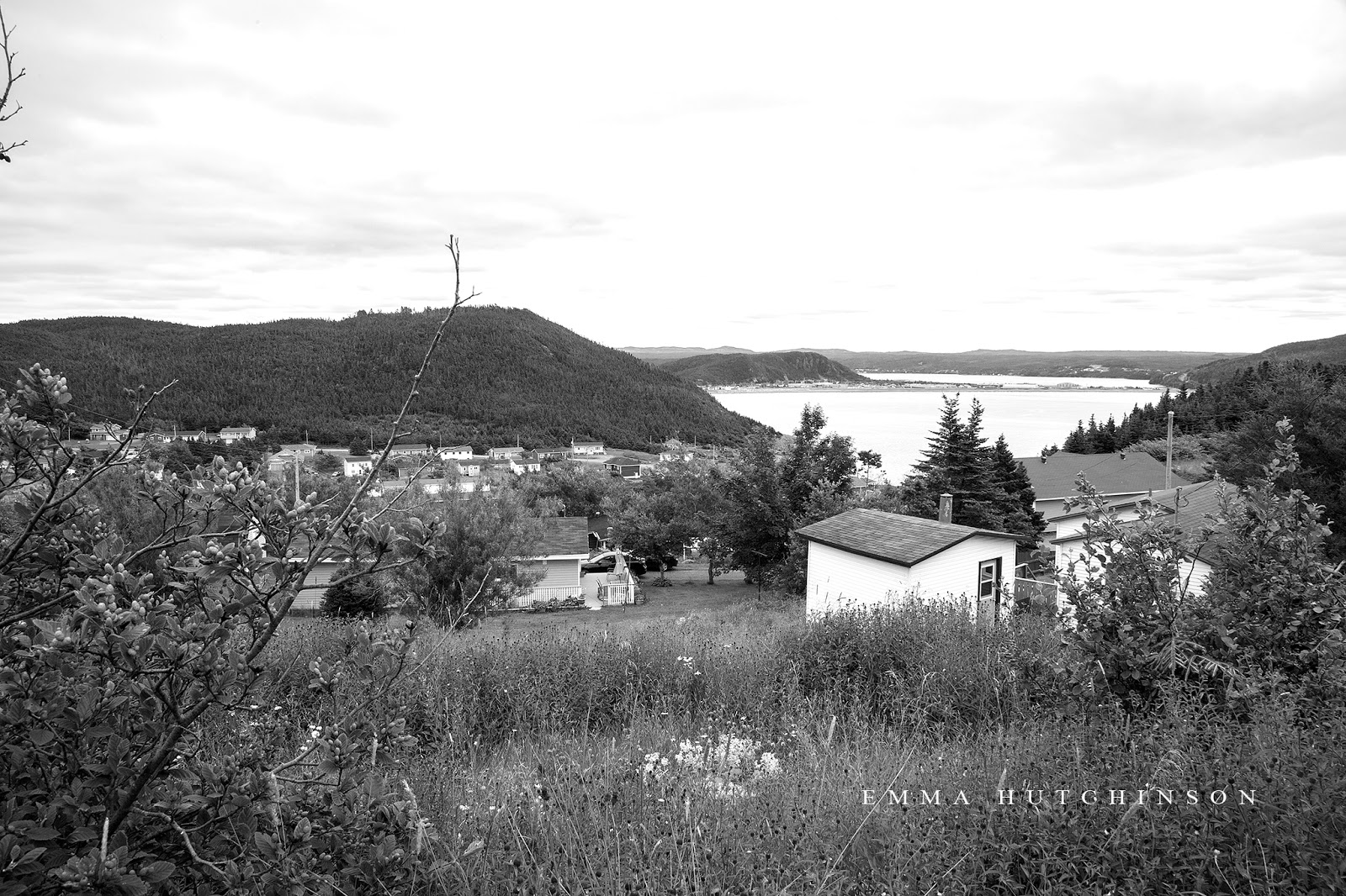 Placentia wedding on the Newfoundland Avalon Peninsula