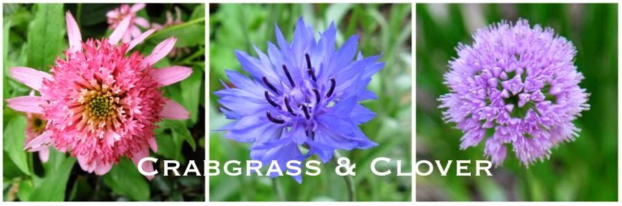 Crabgrass & Clover