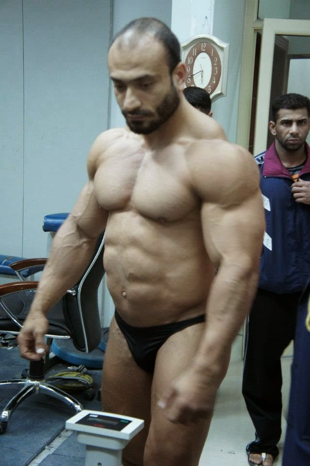 arab female body builders