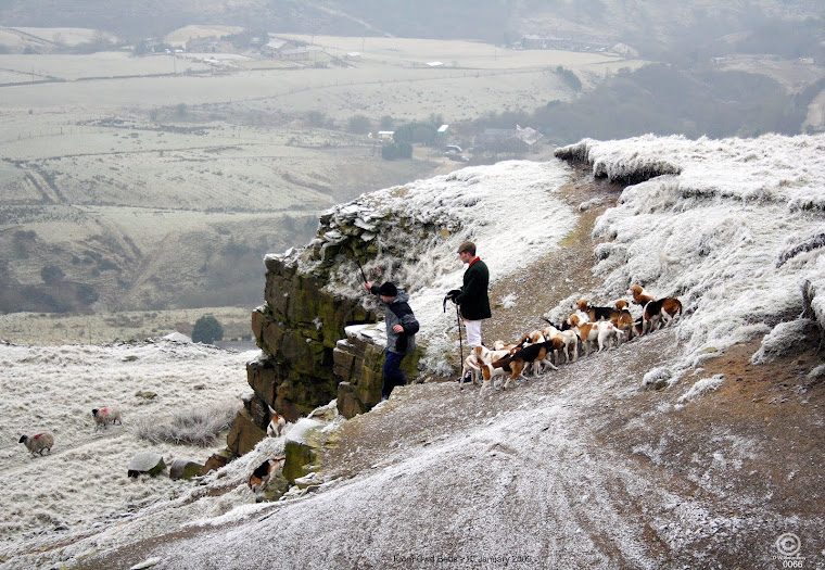 Colne Valley Beagles and other things of interest.