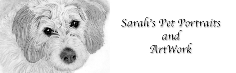 Sarahs Pet Portraits and Art Work
