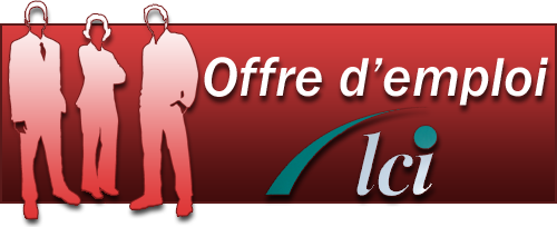 offre d 39 emploi mayotte directeur administratif et financier h f. Black Bedroom Furniture Sets. Home Design Ideas