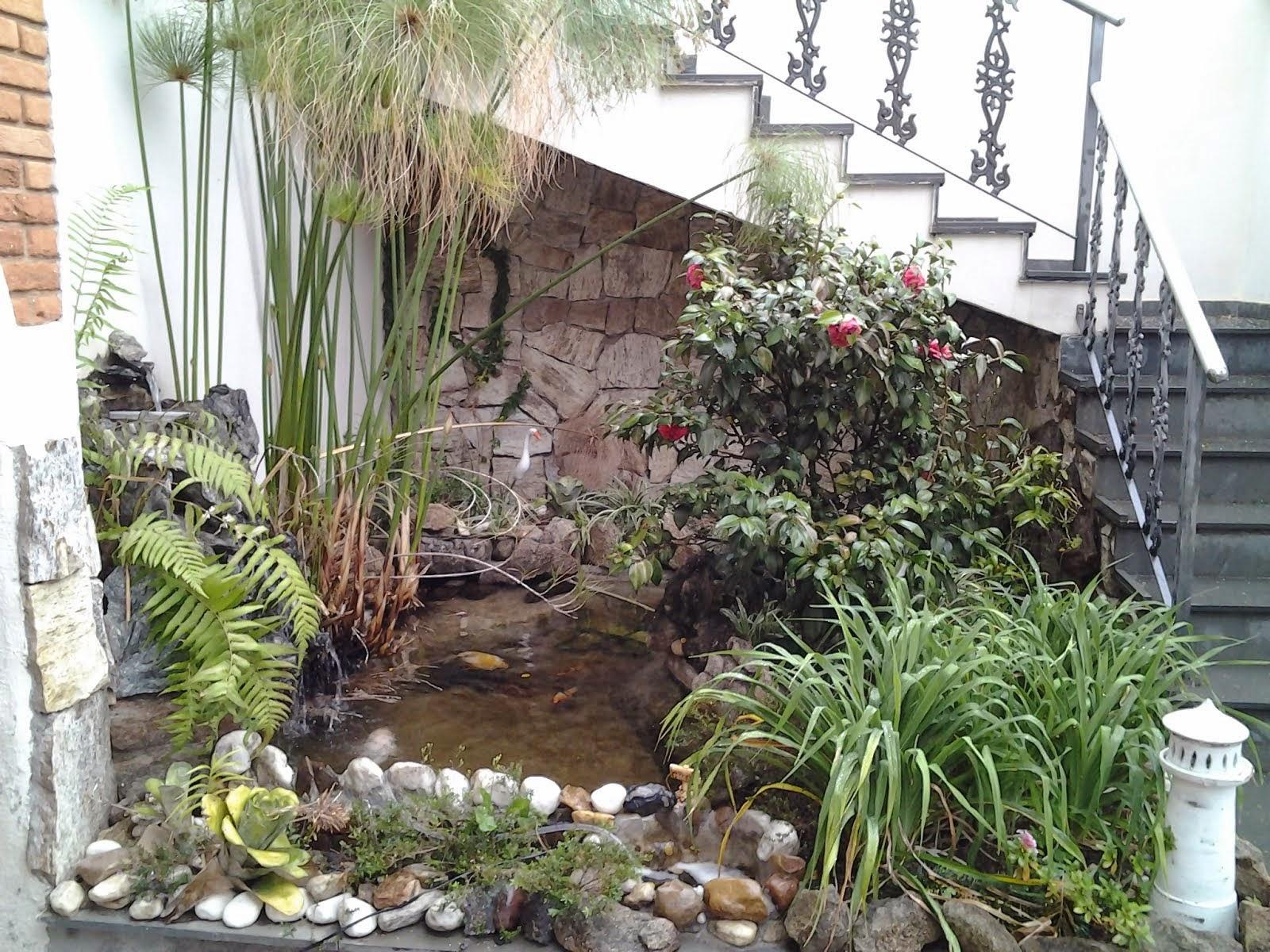Lago do meu Jardim