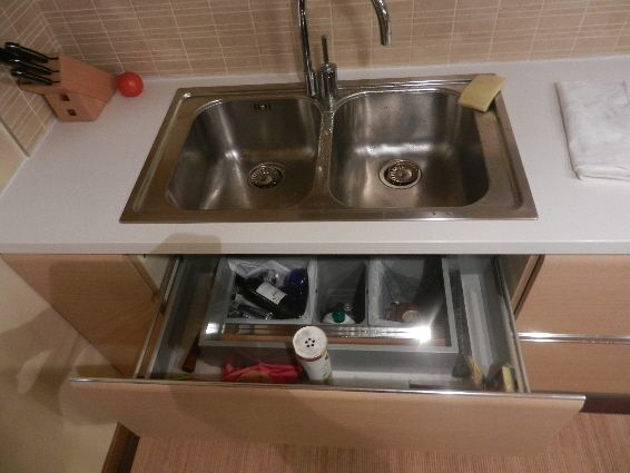Dishwasher Sink : Drawer Dishwasher Under Sink - Kitchen Design Photos 2015