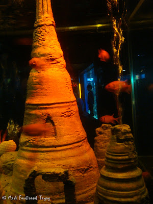 Siam Ocean World - Bangkok Photo 11