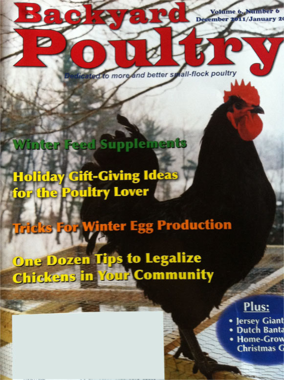 cluck campaign gets national attention in backyard poultry magazine