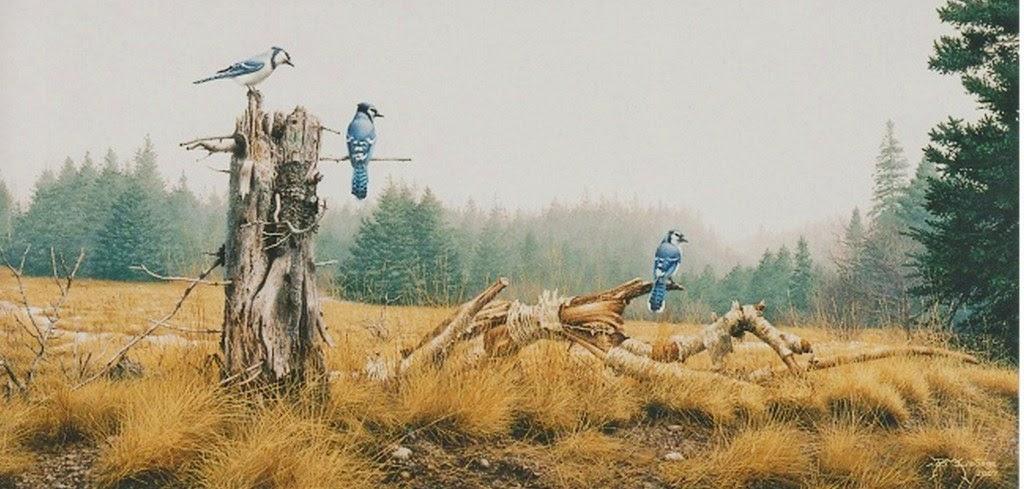 paisajes-en-hiperrealismo-con-pajaros