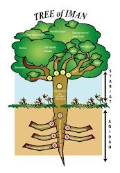 Tree of Iman