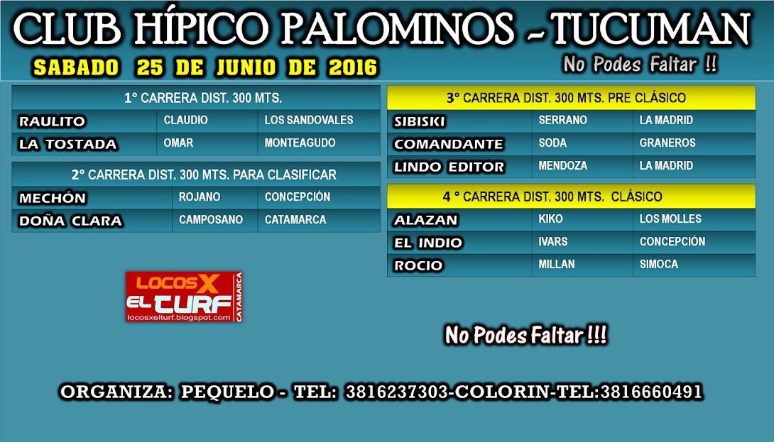 25-06-16-HIP. PALOMINOS-PROG.