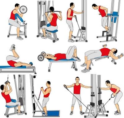 Tcop fitness center gym rutina biceps triceps motivaci n gym for Gimnasio 1 de mayo