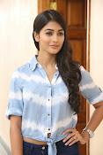 Pooja hegde gorgeous photo shoot-thumbnail-40