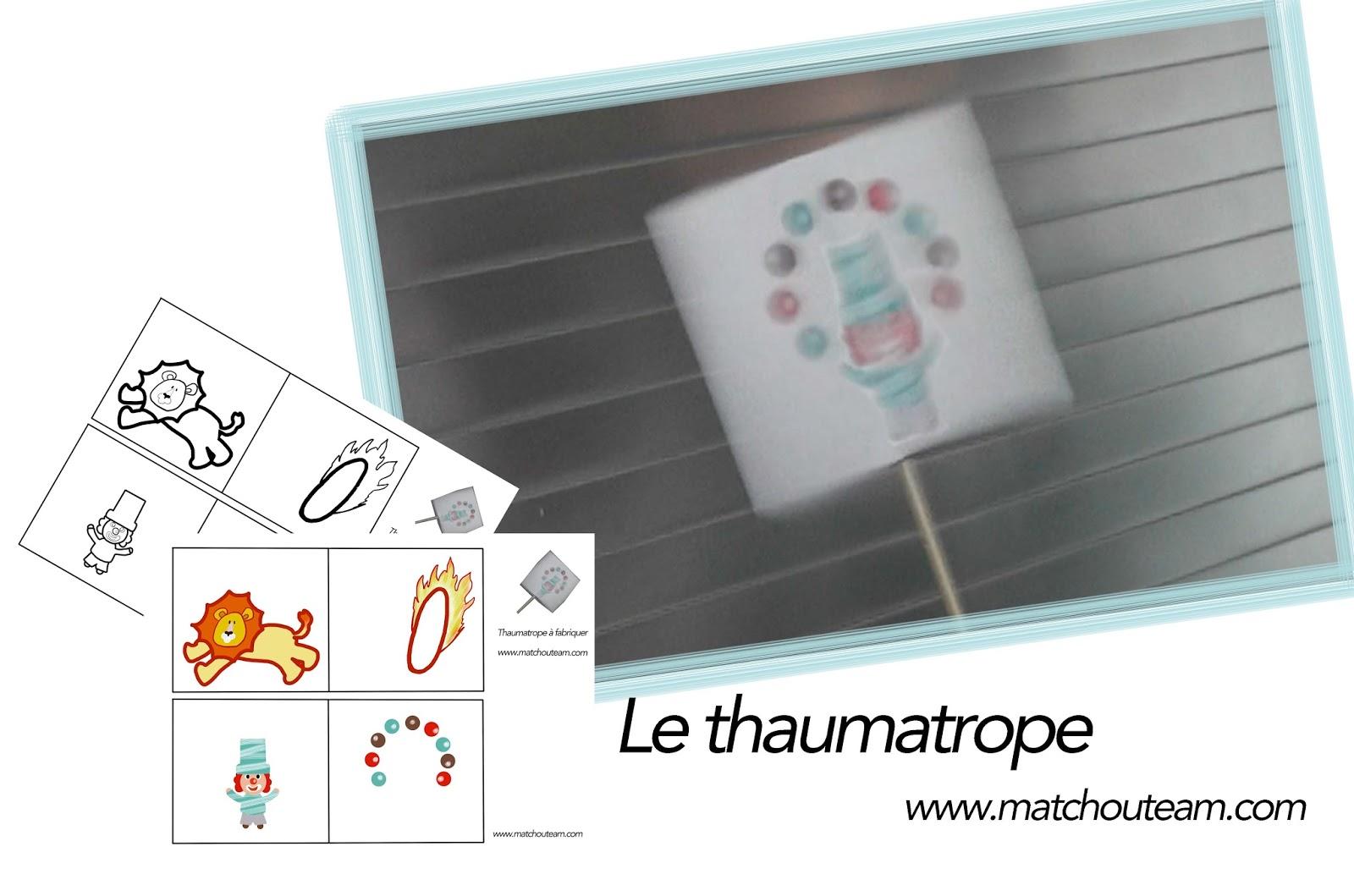 thaumatrope jeu optique
