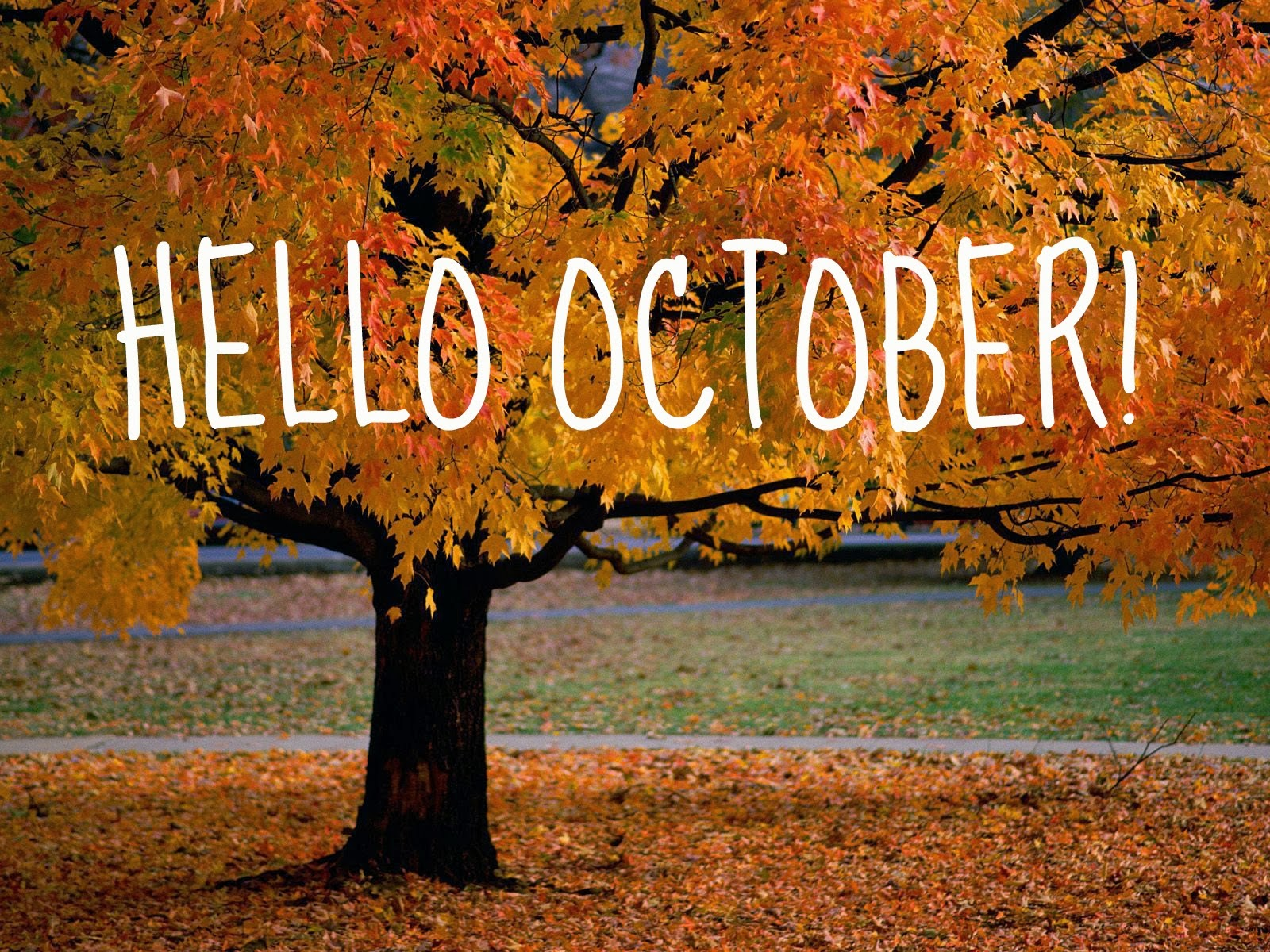 Delightful Goodbye September U0026 Welcome Fall.