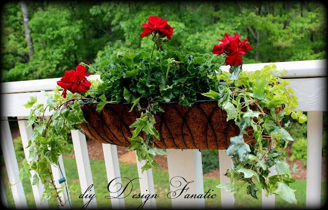 Diy design fanatic more flowers for the deck - Care geraniums flourishing balcony porch ...