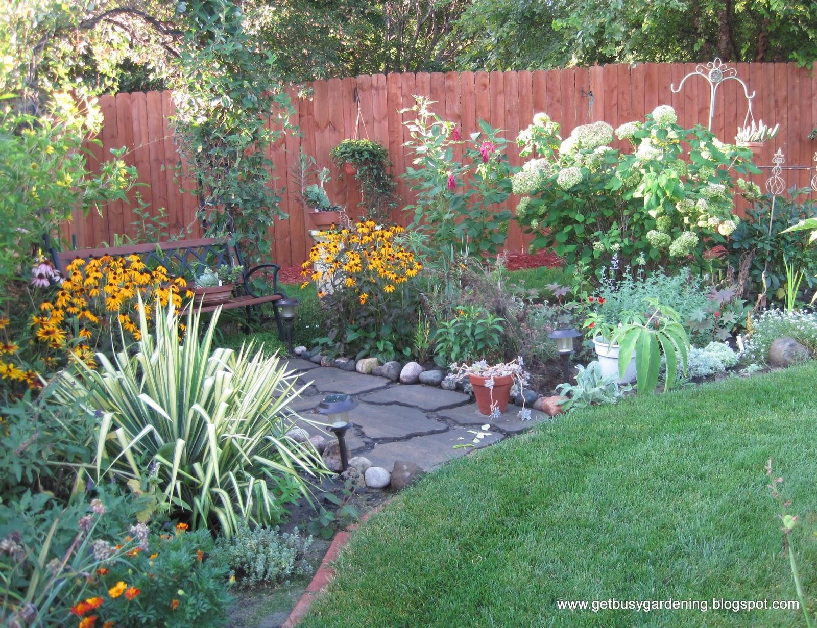 Winter gardening tasks get busy gardening for Garden designs for sun