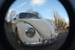 Classic beetle photograph
