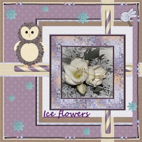 Jan.2016 – Ice flowers.