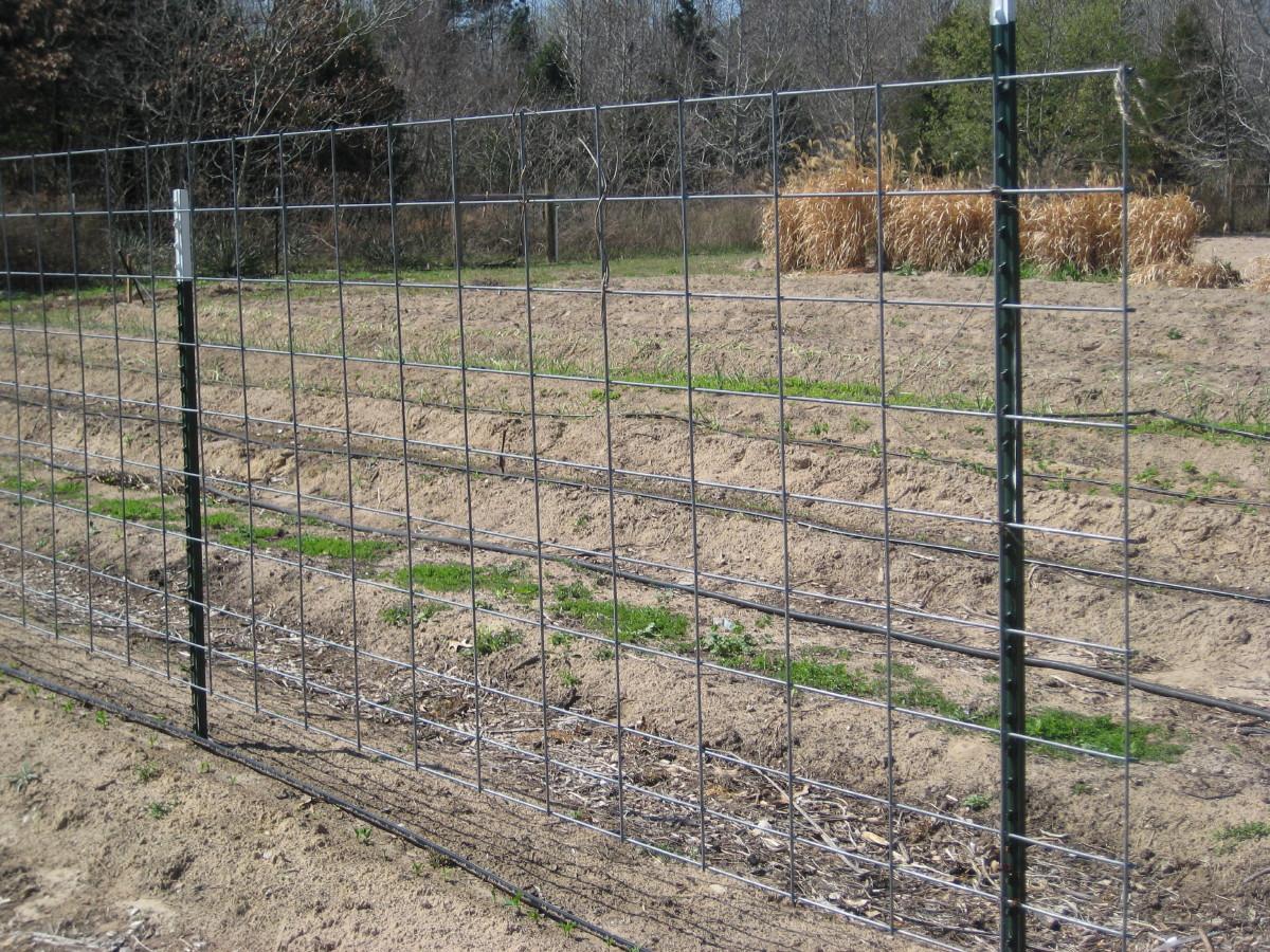Hog Fence Panels 187 Fencing