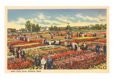 tulip farm holland, marissa haque & ikang fawzi