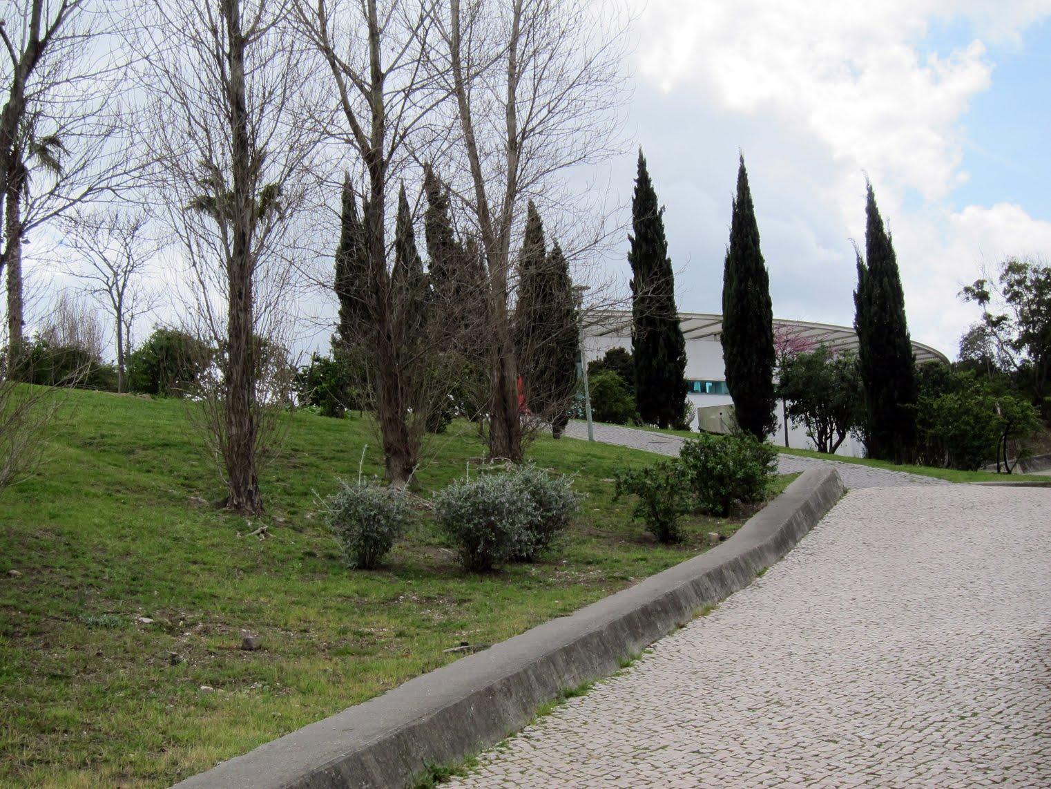 http://1.bp.blogspot.com/-vKd4HACRQ4g/TY-NThCRsGI/AAAAAAAAASE/l1dbcCL1b8U/s1600/Lisboa%2B17.jpg