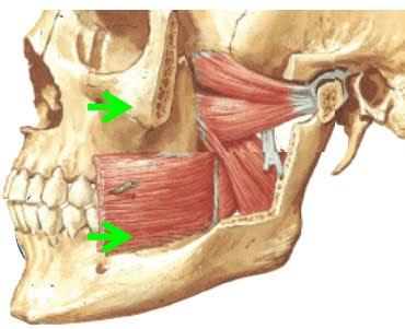 Radiologia Nota 10 Aqui Desde 2010 Atm