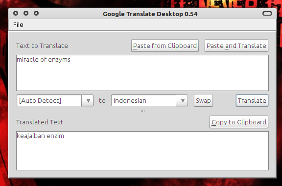 Google Translate Desktop di Ubuntu 10.10