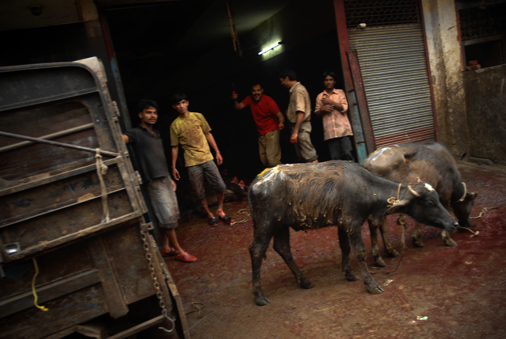 In this image simple shacks are functioning as slaughterhouses in Delhi in India
