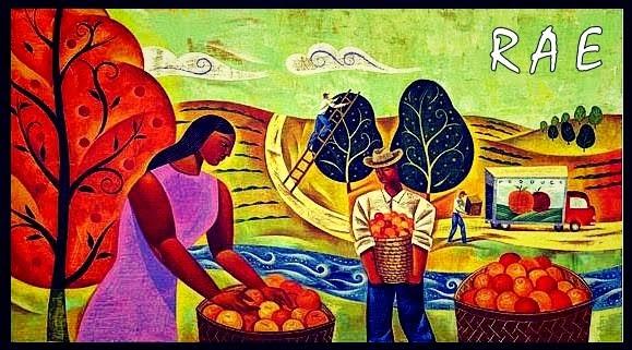 Rede de Agricultura Ecológica