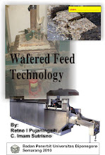 Wafer Feed Technology