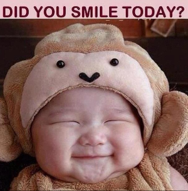 did you smile today? funny picture