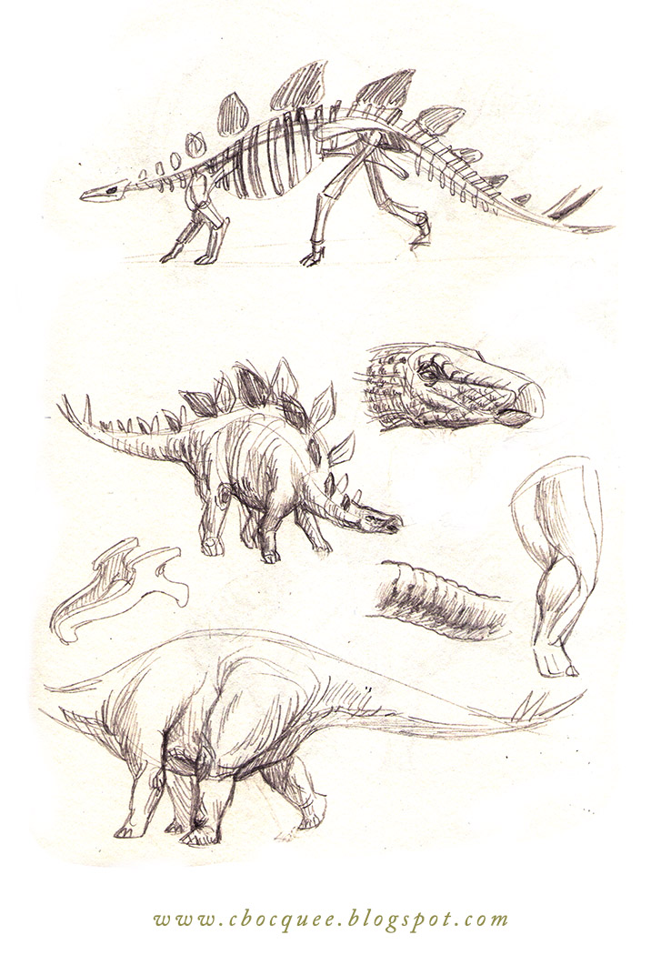 drawings of stegosaurus dinosaur