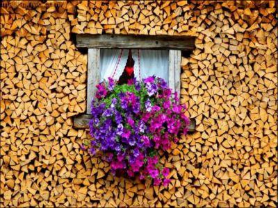 Cum se depoziteaza lemnele...