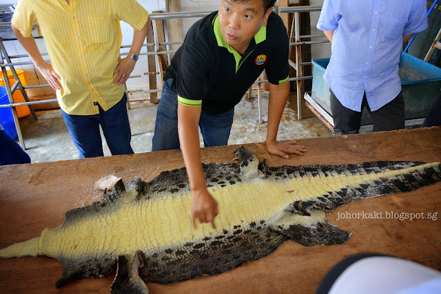 Long-Kuan-Hung-Crocodile-Farm-农光行鳄鱼场-Singapore