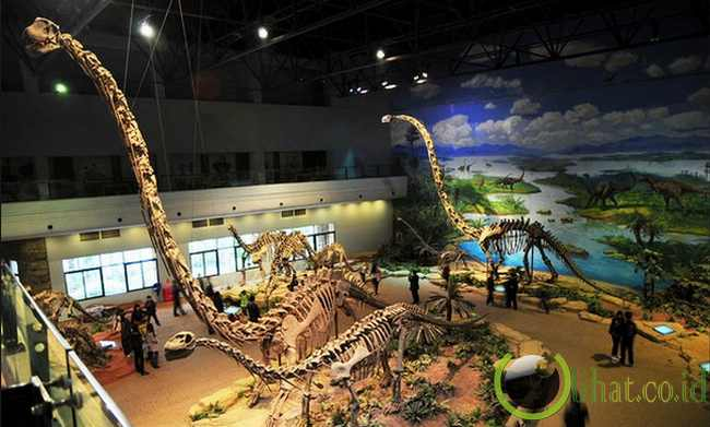 Zigong China  city pictures gallery : Zigong Dinosaur Museum, Zigong, China