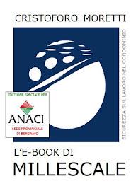 L'e-book.
