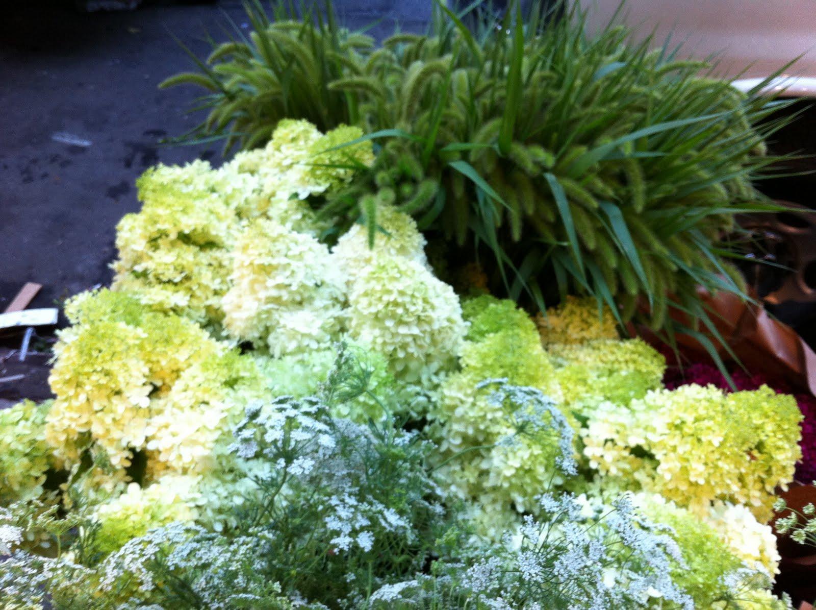 blade new york Flower Market Finds Local Flowers