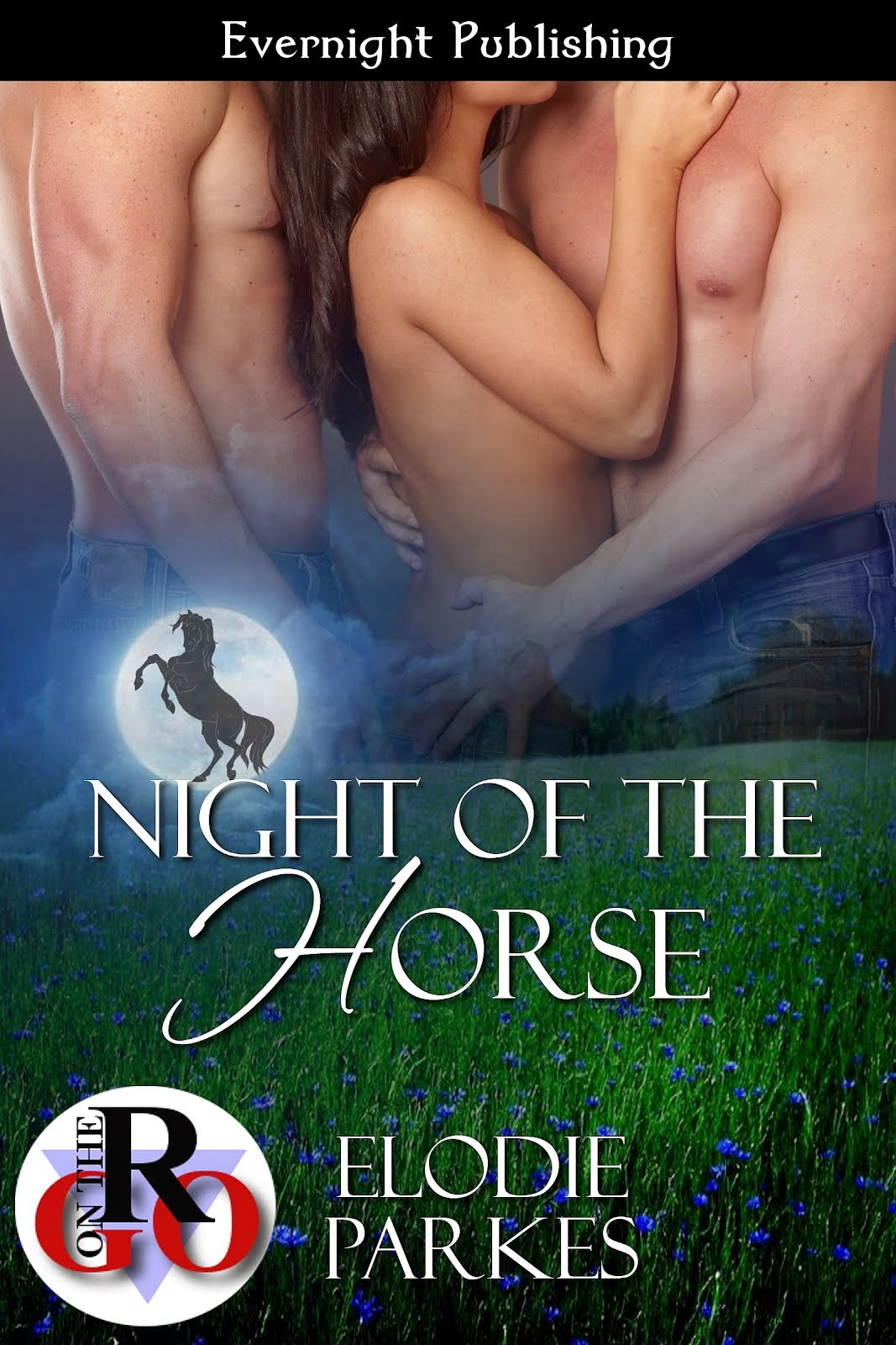 Night of the Horse a top 5 best seller on Siren Bookstrand