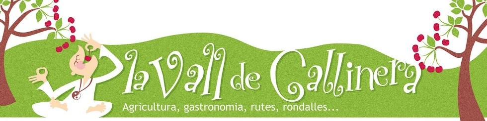 La Vall de Gallinera. Agricultura, gastronomia, rutes, rondalles...